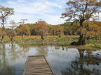 Caddo Lake 02