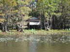 Caddo Lake - Dick   Charlie s Tea Room 01