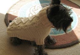 Chip in Biscuits and Bones Sweater 02