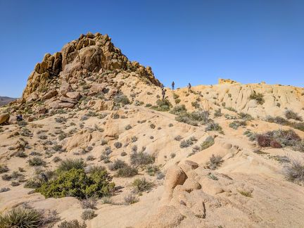 037-Joshua Tree National Park,-20190313 Joshua Tree NP (39)